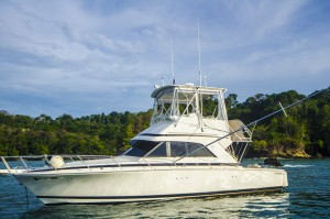 Reel In 1 luxury 36 ft bertram quepos costa rica
