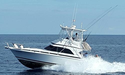 36 ft Bertram Luxury Fishing Boat