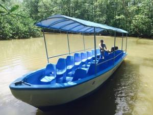25 ft Panga Mangrove Fishing Damas